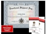 Emotional Support Dog Certificate Template Emotional Support Dog Basic Kit Us Dog Registry