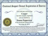 Emotional Support Dog Certificate Template Emotional Support Dog Laws Protecting Your Rights