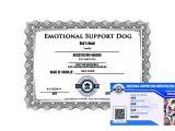 Emotional Support Dog Certificate Template Emotional Support Dog Registration Basic