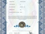 Emotional Support Dog Certificate Template Esa Dog Certificate Page 2 Pics About Space