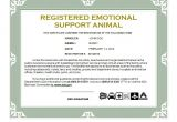 Emotional Support Dog Certificate Template the Particular Unexpected Truth with Regards to Mental