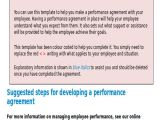 Employee Performance Contract Template Performance Agreement Contract Sample 10 Examples In
