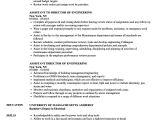 Engineer Helper Resume assistant Director Engineering Resume Samples Velvet Jobs