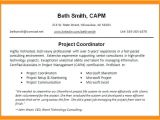 Engineer Resume Headline Headline Resume Examples Wikirian Com