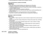 Engineer Resume Help Resume Service Engineer Stealth Services and