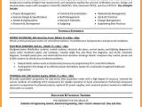 Engineering Resume Objective 5 Electrical Engineering Cv Template Dragon Fire Defense