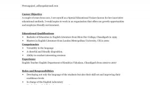 English Resume Template English Resume Template Learnhowtoloseweight Net
