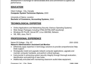 Entry Level Resume Templates Free Entry Level Resume Template Free Samples Examples