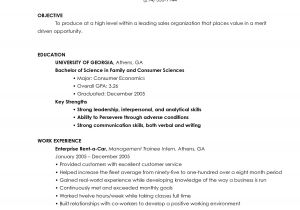 Entry Level Resume Templates Free Resume Objective Entry Level Resume Ideas
