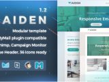 Envato Responsive Email Templates Aiden Responsive Email Template by Nutzumi themeforest