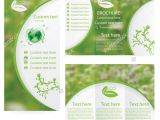 Environment Brochure Template 17 Environmental Brochure Templates Free Pds Ai