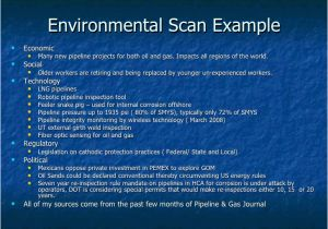 Environmental Scan Template Sustaining Customer Relationships Rev 1