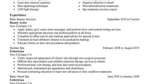 Esthetician Resume Sample Beauty Artist Resume Example Sample Cosmetology Examples