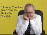 Evil Hr Lady Cover Letter Business Career Tips Wisecareers Com