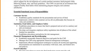 Example Of A Job Description Template 10 It Job Description Examples Ledger Paper