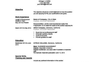 Example Of Basic Resume Outline 5 Customizable Resume Outline Templates and Worksheets Hloom