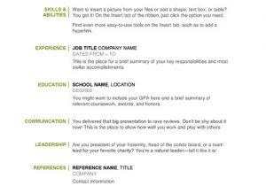 Example Of Basic Resume Outline Basic Resume