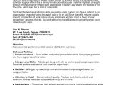 Example Of Basic Resume' Layout Example Resume Basic Computer Skills Summary Skill Sample