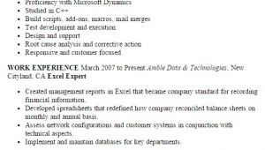 Excel Resume Template Professional Excel Expert Templates to Showcase Your