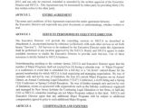 Executive Director Contract Template 9 Director Agreement Templates Free Sample Example