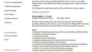 Executive Resume format Word 6 Executive Resume Templates Word Website WordPress Blog