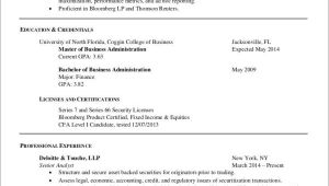 Extensive Resume Sample 5 Quick Fixes to Long Resume Samples Templates Sample