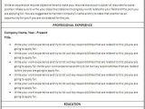 Fill In the Blank Nursing Resume Fill In the Blank Sample Resume Resume Resume Examples