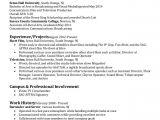 Film Director Resume Template Film Television Resume