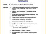 Film Director Resume Template How to Make Video Resume Script Resume Ideas