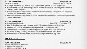 Finance Manager Resume Template Finance Manager Resume Examples Resume Template