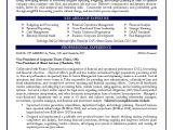 Finance Resume Sample Pdf Cfo Sample Resume Vp Of Finance Sample Resume