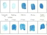 Fingerprint Paper Template forensics November 2011