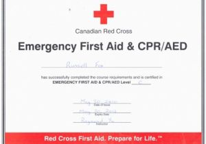 First Aid Certificate Template Free 4 Best Images Of Free Printable First Aid Certificate
