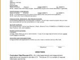 First Resume Templates 9 First Resume No Experience Financial Statement form