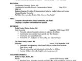 First Year College Student Resume College Student Resume 8 Free Word Pdf Documents