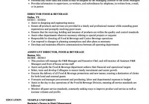 Food Basic Resume Director Food Beverage Resume Samples Velvet Jobs