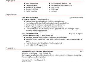 Food Basic Resume Simple Food Service Specialist Resume Example Livecareer