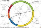 Food Wheel Template Teacher 39 S Pet Food Groups Drawing Premium Printable
