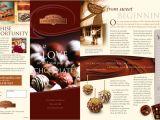 Franchise Brochure Templates Brochures Intelimpact Com
