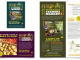 Free Agriculture Flyer Templates Farmers Market Flyer Ad Template Word Publisher