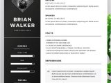 Free Cv Resume Template Word 130 New Fashion Resume Cv Templates for Free Download