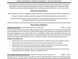 Free Executive Resume Templates Executive Resume Template 31 Free Word Pdf Indesign
