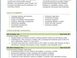 Free Executive Resume Templates Free Professional Resume Templates Download Resume Downloads