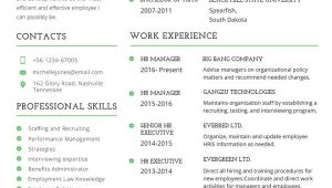 Free Hr Professional Resume Templates 10 Professional Fresher Resume Templates In Word Pdf