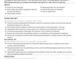 Free Professional Resume Builder Free Resume Builder Online Create A Professional Resume
