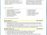 Free Professional Resume Examples and Samples Professional Resume Templates Sample Free Samples