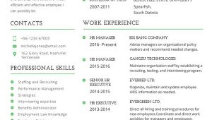 Free Professional Resume Templates 26 Word Professional Resume Template Free Download
