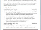 Free Professional Resume Templates Download Free Professional Resume Templates Download Resume Downloads