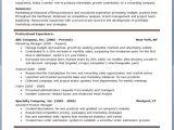 Free Professional Resume Templates Free Professional Resume Templates Download Resume Downloads