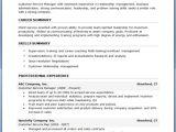 Free Professional Resume Templates Free Resume Samples Download Sample Resumes